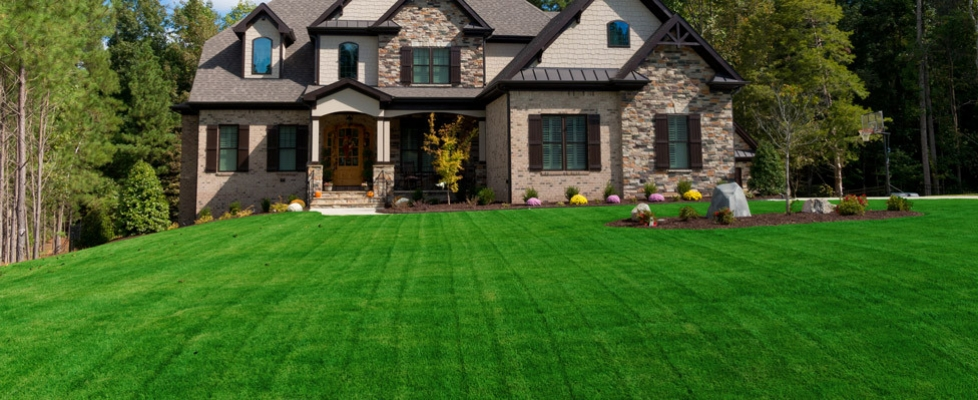 High quality weed control, fertilizing and lawn care services in Ellicott City & Howard County, MD.